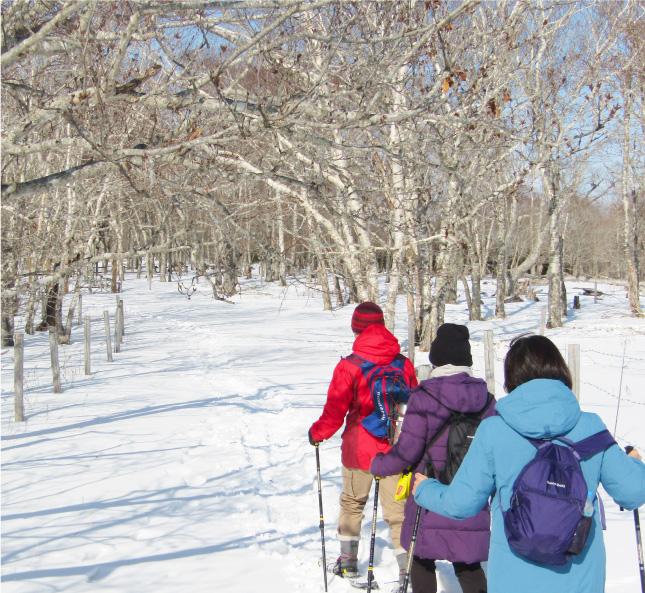 冬の体験ツアー